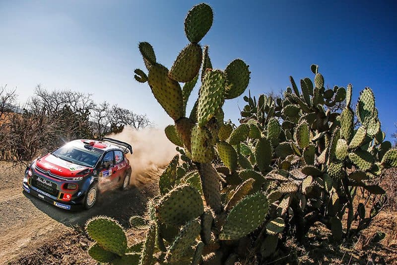 Sebastien Loeb was unbeaten in Central and South America between 2005 and 2012. Photo: Martin Holmes Rallying